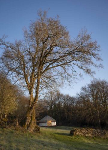 Hill Farm Tintern
