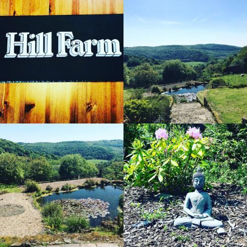 hillfarmgallery (14)