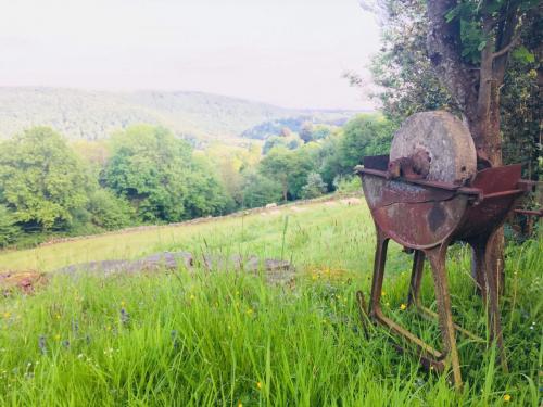 hillfarmgallery (33)